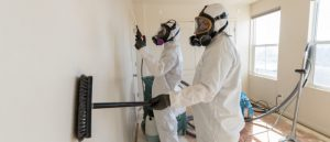 Illicit drug decontamination in progress